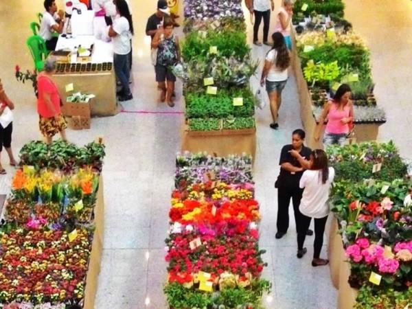 Exposição de flores e plantas no Carioca Shopping - Foto: Divulgação